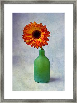 Green Bottle With Orange Daisy Framed Print by Garry Gay