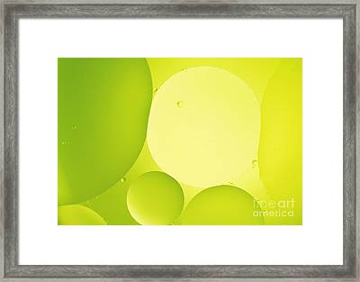 Green Bubbles Framed Print by Angela Bruno