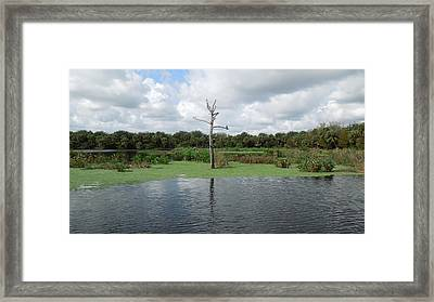 Framed Print featuring the photograph Green Cay Panorama by Ron Davidson
