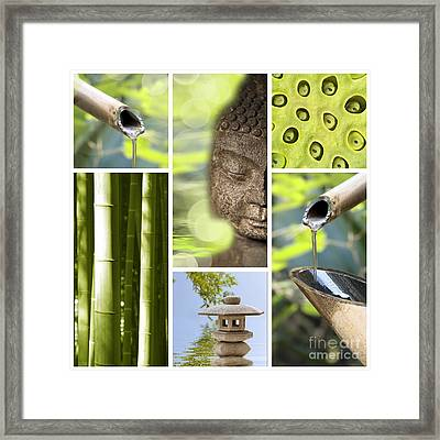 Green Collage Framed Print by Delphimages Photo Creations