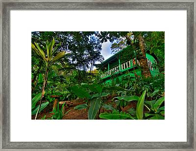 Green Costa Rica Paradise Framed Print by Andres Leon