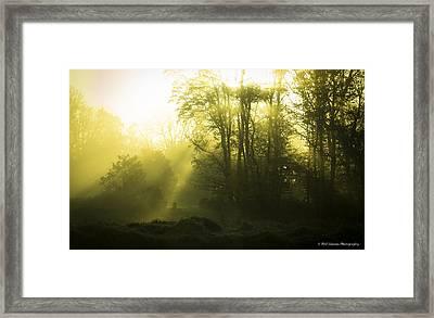 Framed Print featuring the photograph Green Dawn by Phil Abrams