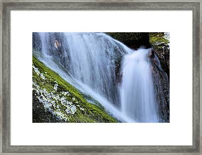 Green Diamonds  Framed Print by JC Findley