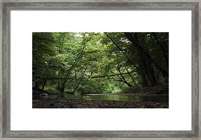 Green Framed Print by Dimitris Lillis