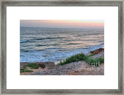 Green Dog Beach Coastline Framed Print by Deborah Smolinske