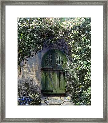 Green Door Framed Print by Terry Reynoldson