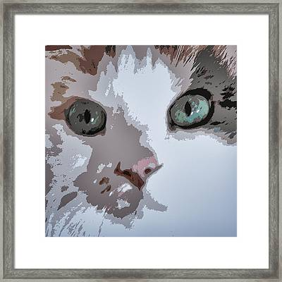 Green Eyes Framed Print by Patricia Januszkiewicz