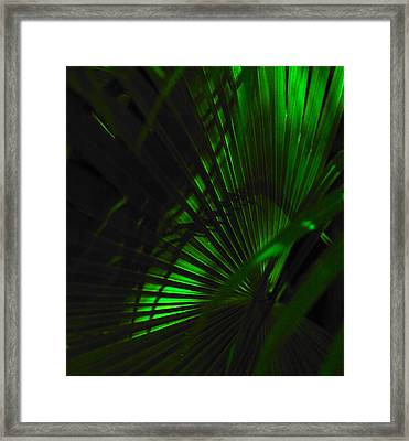 Green Fan Framed Print by Silke Brubaker