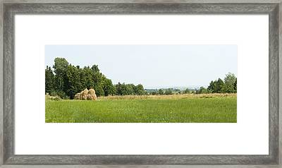 Green Field Panorama Framed Print