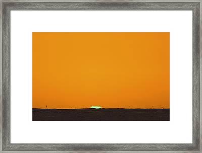 Green Flash Bird Pile Framed Print by Sean Davey