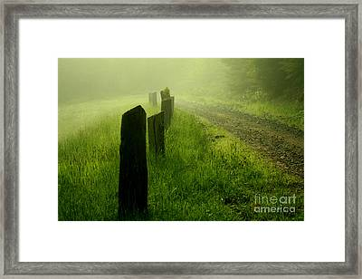 Green Fog Framed Print