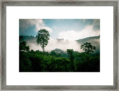 Green Forest With Blue Sky With Cloud And Fog Framed Print
