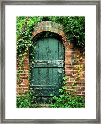 Green Garden Door Framed Print by Steven Ainsworth