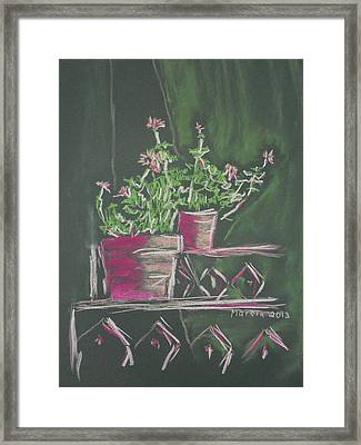 Green Geraniums Framed Print by Marcia Meade