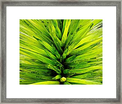 Green Glass Abstract Framed Print by Edward Fielding