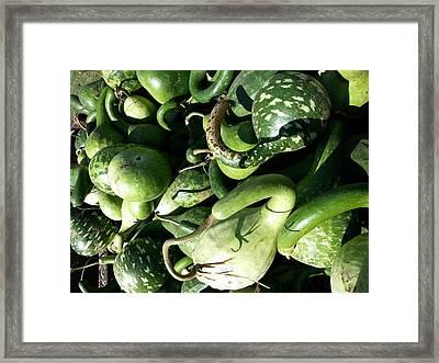 Green Goosenecks Framed Print