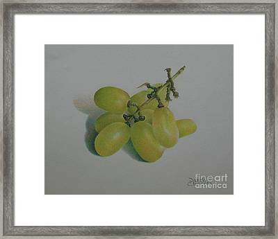 Green Grapes Framed Print by Pamela Clements
