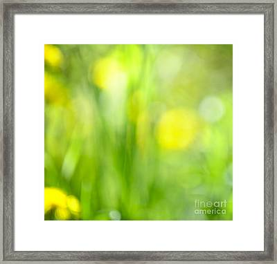 Green Grass With Yellow Flowers Abstract Framed Print