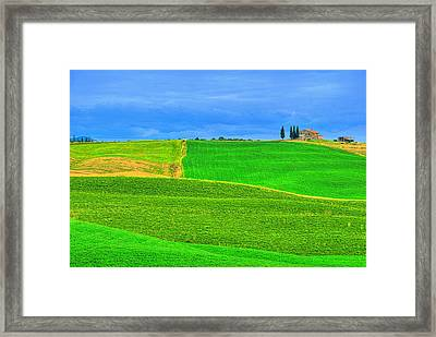 Green Green Grass Of Home Framed Print by Midori Chan