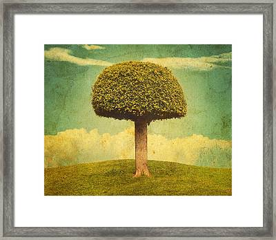 Green Growing Lullaby Framed Print