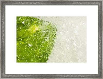Green Ice Framed Print by Ahmed Tarek Shaffik