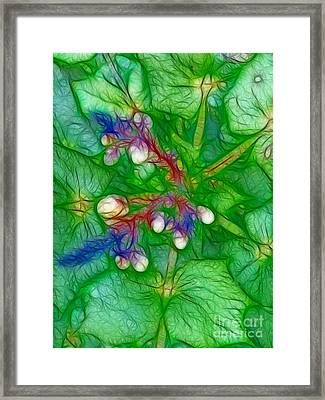 Green Illusion Framed Print by Eva-Maria Di Bella