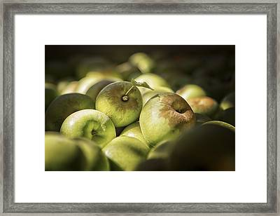 Green Jewels Framed Print