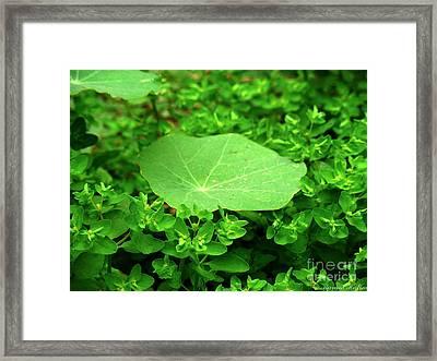 Green Framed Print by Karam Halim