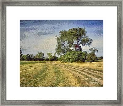Green Landscape  Framed Print