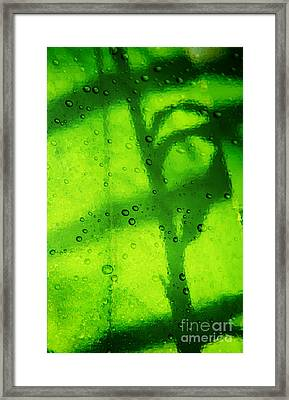 Green Leaf Through The Glass Framed Print by Lali Kacharava