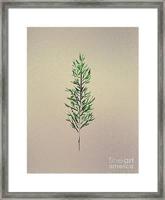 Green Leaves Framed Print by John Krakora
