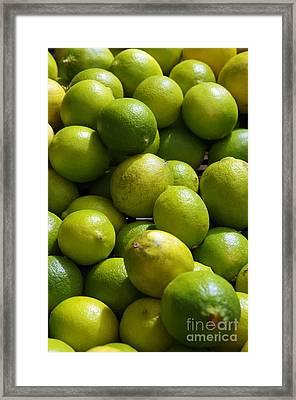Green Limes Framed Print by Carlos Caetano