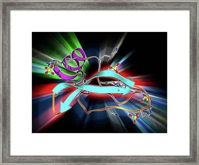 Green Mamba Venom Molecule Framed Print by Laguna Design