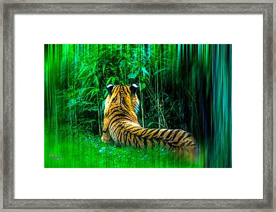 Framed Print featuring the photograph Green Meditation by Glenn Feron