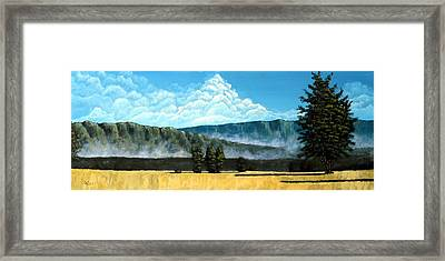Green Mist Framed Print by Michael Dillon