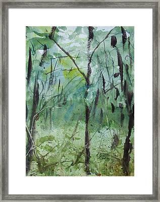 Green Morning 1 Framed Print