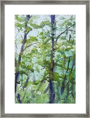Green Morning 2 Framed Print