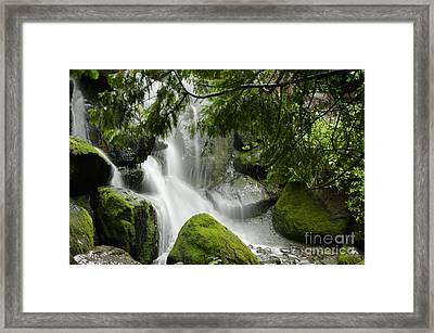 Green Moss Waterfall Framed Print