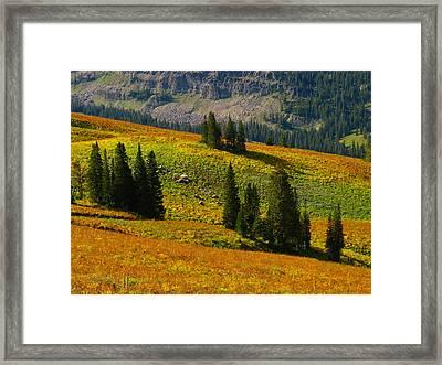 Green Mountain Trail Framed Print by Raymond Salani III