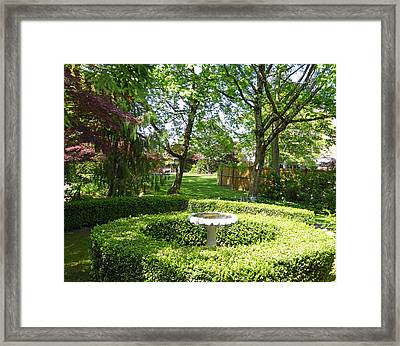 Framed Print featuring the photograph Green Oasis H  by Laurie Tsemak