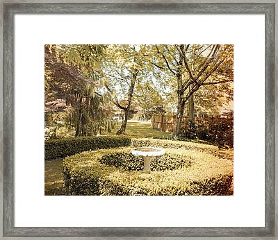 Framed Print featuring the photograph Green Oasis Memory by Laurie Tsemak