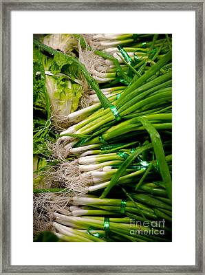 Green Onions Framed Print by Amy Cicconi