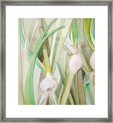 Green Onions Framed Print by Debi Starr