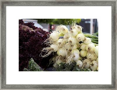 Green Onions Framed Print by Terry Horstman