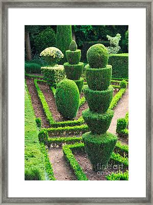 Green Park Framed Print by Boon Mee