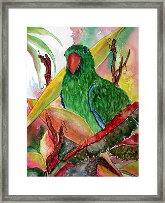 Framed Print featuring the painting Green Parrot by Lil Taylor