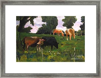 Green Pastures Roann Framed Print by Charlie Spear