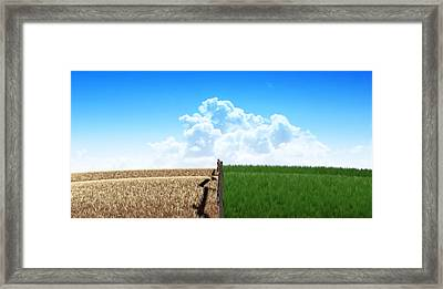 Green Pastures With Fence Framed Print