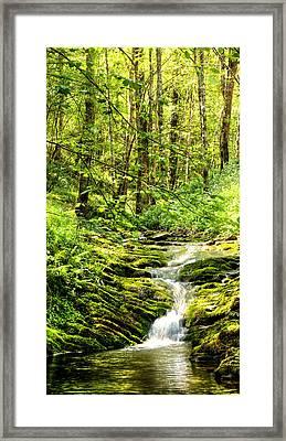 Green River No2 Framed Print by Weston Westmoreland