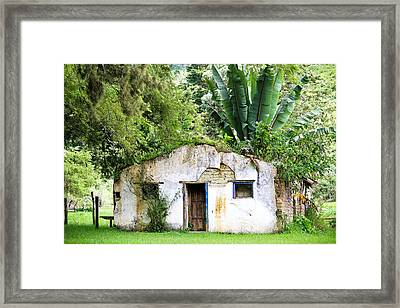 Green Roof Framed Print by Menachem Ganon